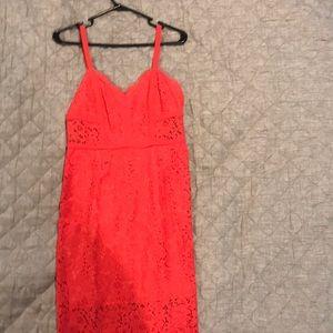 Size 6 lace express dress
